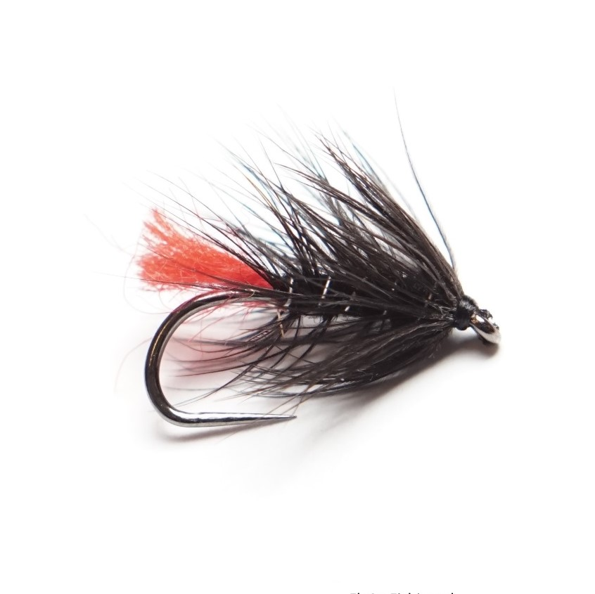 Wet Fly 1 Black Zulu